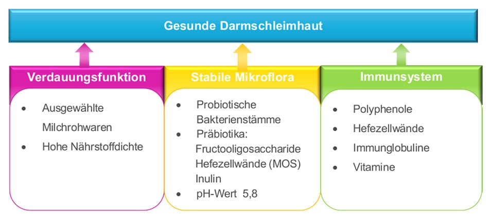 JOSERA Grafik zeigt Einflüsse auf eine gesunde Darmschleimhaut