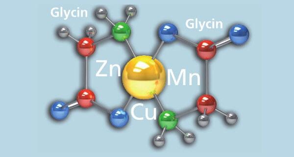 JOSERA Grafik zeigt Verbindung von Elementen