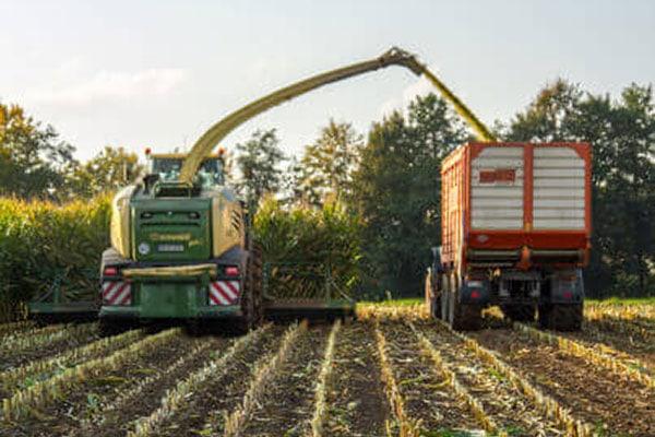 JOSILAC Maschinen während der Mais Ernte