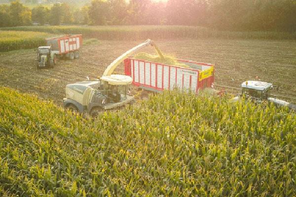 JOSILAC Maschinen während der Maisernte