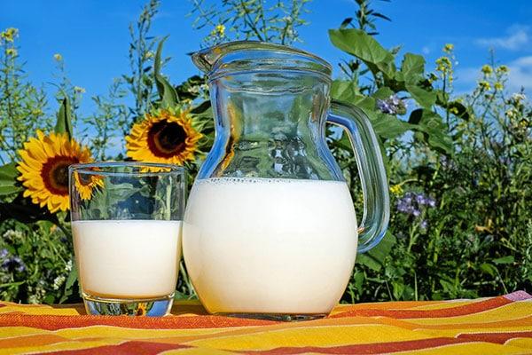 JOSERA Milchglas auf Tisch