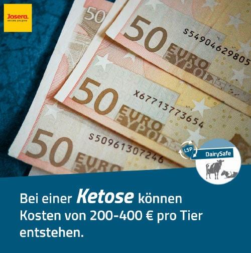 JOSERA Kosten einer Ketose von 200-400 Euro pro Tier