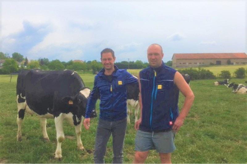 JOSERA DairyPilot – die Milchqualität in den Übergangsphasen verbessern