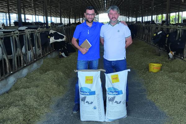 JOSERA DairySafe – für bessere Tiergesundheit und Milchleistung